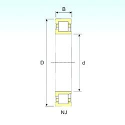 55 mm x 100 mm x 21 mm  ISB NJ 211 Rodamientos De Rodillos