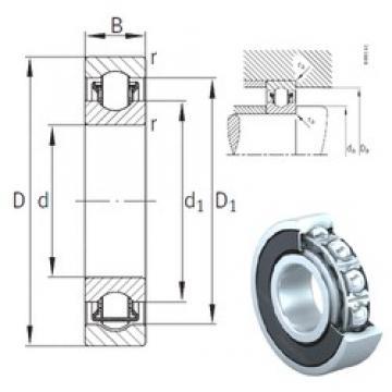 25 mm x 47 mm x 12 mm  INA BXRE005-2HRS Rodamientos De Agujas