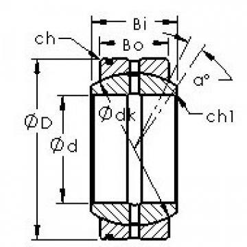 AST GE60XS/K Rodamientos Deslizantes