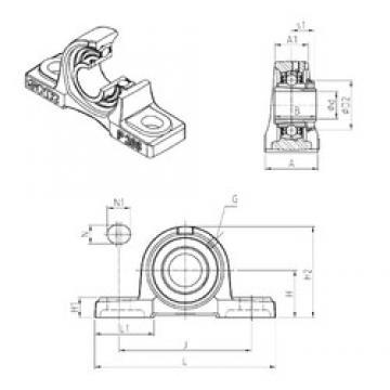 SNR UKP317H Unidad De Rodamiento