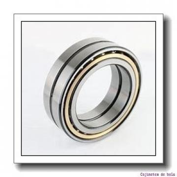 60,000 mm x 115,000 mm x 28,000 mm  NTN SX1279LLU Cojinetes De Bola De Contacto Angular