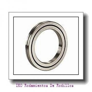 60 mm x 95 mm x 18 mm  ISB NU 1012 Rodamientos De Rodillos