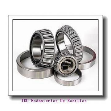12 mm x 24 mm x 13 mm  INA NAO12X24X13 Rodamientos De Agujas