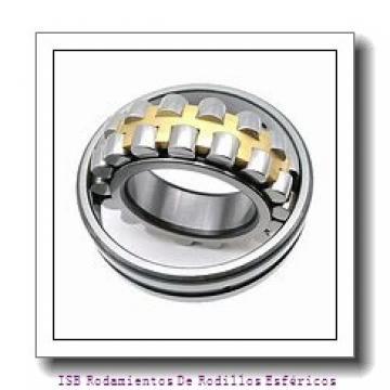 AST AST650 8096100 Rodamientos Deslizantes